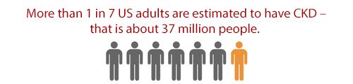 ore than 1 in 7 US adults are estimated to have CKD - that is about 30 million people